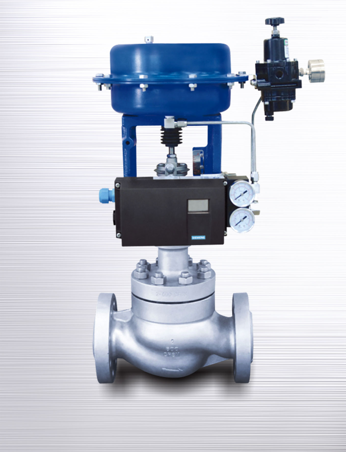 Cage Double Seated Control Valves